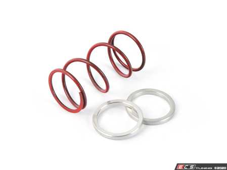 ES#4029677 - fmwcsr - Wastegate Springs & Shims - Red - These are the individual springs and shims sold in our FMWCSPK kit for our 44mm wastegate FMWCW1. - Forge - Audi BMW Volkswagen Mercedes Benz MINI Porsche