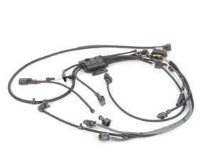 Surprising Bmw E90 335I N54 3 0L Engine Electrical Harnesses Page 1 Ecs Tuning Wiring 101 Kwecapipaaccommodationcom