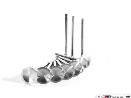ES#2794482 - FER25F2195P - Ferrea Intake Valve Set - +1mm - Set of 10 oversized +1mm, 3 groove, EV8-Z18 intake valves. Will require cylinder head machine work. - Ferrea - Volkswagen
