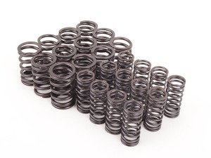 ES#3025537 - 005602022-062 - Schrick performance Valve Spring Set  - Tougher valve spring to support higher lift - Schrick - BMW