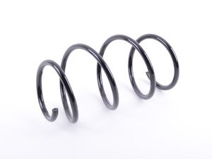 ES#2915023 - 31331096038 - Front Coil Spring - Replace your cracked springs - Suplex - BMW